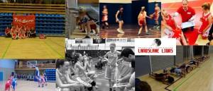 Landslake Lions Vu14-1 Teampictures 1